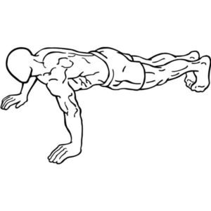 APFT Calculator | Body Fat & Army Physical Fitness Test