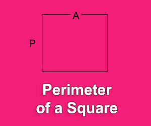 Calculate the Perimeter of a Square